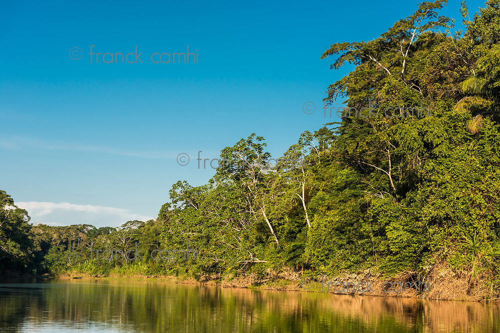 heath river in the peruvian Amazon jungle at Madre de Dios