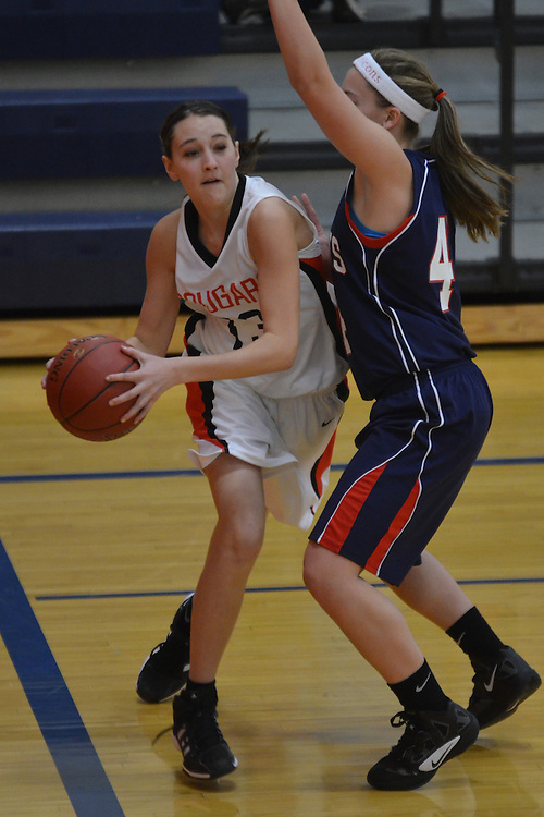 Ada-Borup Cougar Girls Basketball.