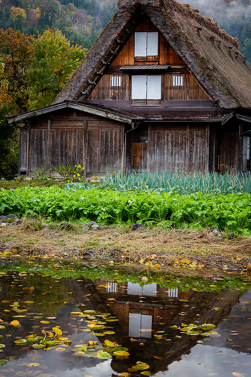 The traditional thatched roof houses of Ogimachi village, in Shirakawa-go, are one of the main reasons this area has been designated a Unesco World Heritage Site