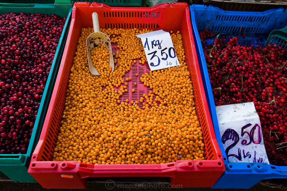 Berries displayed at the Central Market in Riga, Latvia.  Riga's Central Market, established in 1201, is one of Europe's largest and most ancient markets.