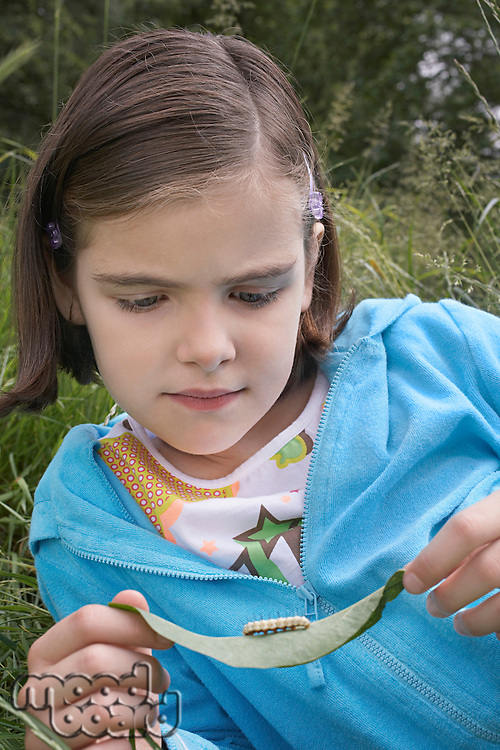 Girl (7-9) examining caterpillar on leaf in field