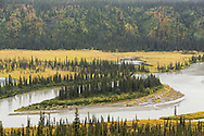 The Susitna River surrounded by spruce and autumn colors as it flows towards Cantwell along the Denali Highway. Afternoon.