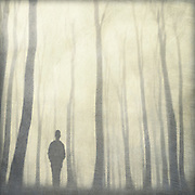 silhouette of a man in a foggy  forest - abstracted a nd textured photograph