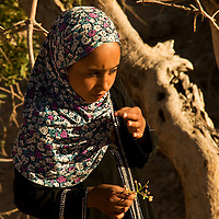 Doha picking wild berries not far from the tent. She likes to daydream. Her name is never said normally but always shouted whenever something is needed from her