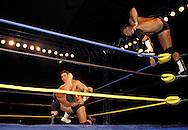 DEU, Germany, Wrestling show.....DEU, Deutschland, Wrestling Show...