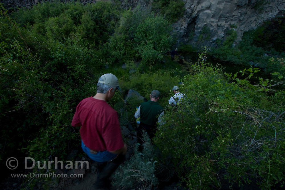 Biologists from several state and federal agencies march down a rugged trail in preparation to set-up mist nets across a pond to capture bats after nightfall. The bat survey will help determine species that use the basalt cliffs at The Nature Cosnervancy's Dutch Henry Falls preserve in central Washington.