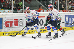 02.11.2014, Curt-Frenzel-Stadion, Augsburg, GER, DEL, Augsburger Panther vs Schwenninger Wild Wings, 16. Runde, im Bild l-r: im Zweikampf, Aktion, mit Thomas Pielmeier #51 (Schwenninger Wild Wings), Steffen Toelzer #13 (Augsburger Panther) und Morten Green #13 (Schwenninger Wild Wings) // during Germans DEL Icehockey League 16th round match between Augsburger Panther and Schwenninger Wild Wings at the Curt-Frenzel-Stadion in Augsburg, Germany on 2014/11/02. EXPA Pictures © 2014, PhotoCredit: EXPA/ Eibner-Pressefoto/ Kolbert<br /> <br /> *****ATTENTION - OUT of GER*****