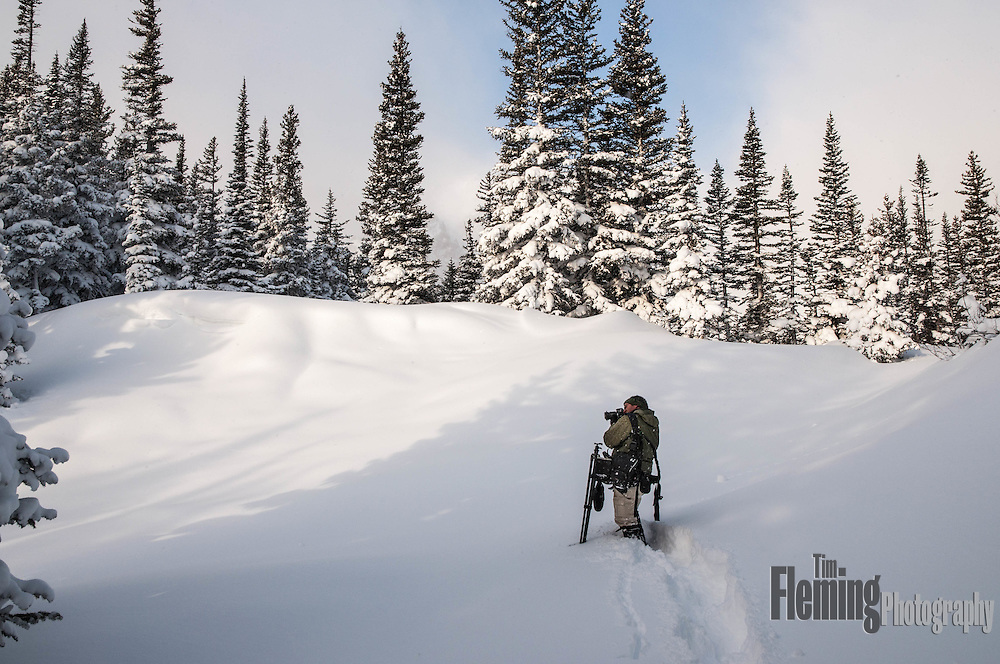 Photographer working in the Rocky Mountains after a fresh snowfall.