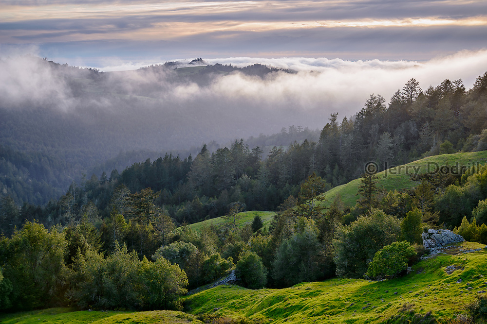 Fog rolls up Willow Creek from the Pacific Ocean near Jenner, along the Sonoma Coast of California.