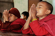 Myanmar/Burma. Buddhist novices praying at school situated in the Shan Mountains.