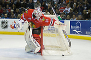 KELOWNA, CANADA - APRIL 07:  Cole Kehler #31 of the Portland Winterhawks at the Kelowna Rockets game on April 07, 2017 at Prospera Place in Kelowna, British Columbia, Canada.  (Photo By Cindy Rogers/Nyasa Photography,  *** Local Caption ***