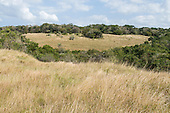 Enseleni Nature Reserve