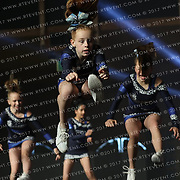 1045_Hellcats Cheerleaders - Tigers