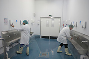 Employees of fish product importers New England Seafoods, wash hands before their shift in the cold processing room