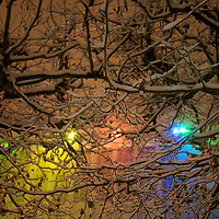 The multi colored lights shine down on the Garden of the Arts during a evening brussels snow storm
