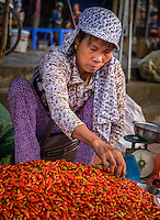 BAC HA, VIETNAM - CIRCA SEPTEMBER 2014:  Vietnamese woman picking red chili peppers at the  Bac Ha sunday market, the biggest minority people market in Northern Vietnam