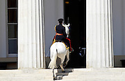 Traditionally the Colonel's horse rides back up the steps and into the Academy after the Passing Out Parade at Sandhurst Royal Military Academy, Surrey.