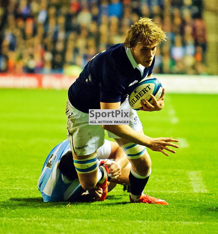 08/11/2014, Murrayfield, Scotland,  Jonny Gray scores a try during the Scotland v Argentina Autumn Test game,.......(c) COLIN LUNN | SportPix.org.uk