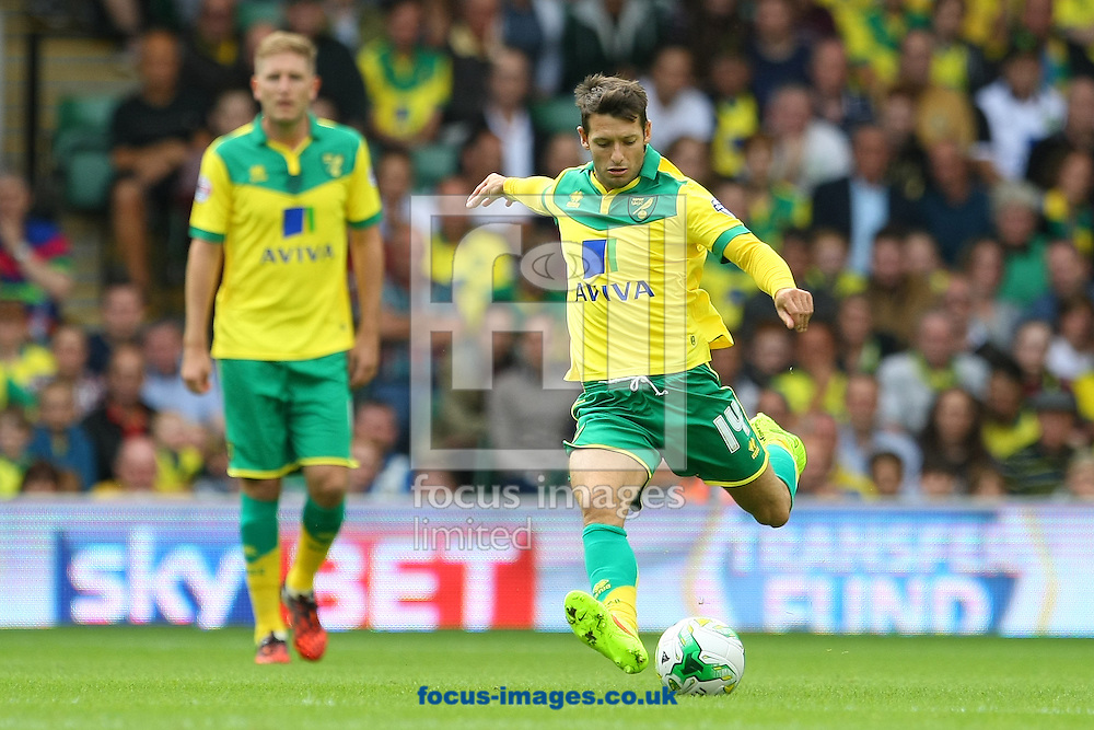 Wes Hoolahan of Norwich in action during the Sky Bet Championship match at Carrow Road, Norwich<br /> Picture by Paul Chesterton/Focus Images Ltd +44 7904 640267<br /> 16/08/2014