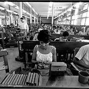 Workers produce a variety of cigars at the Havana city Partagas Cigar Factory.