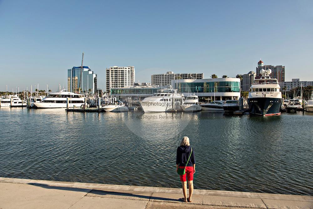 Skyline and Marina from Bayfront Park Sarasota, Florida