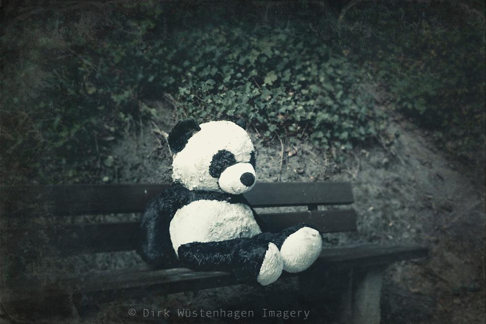 Stofftier Panda auf Parkbank, Wuppertal, Deutschland