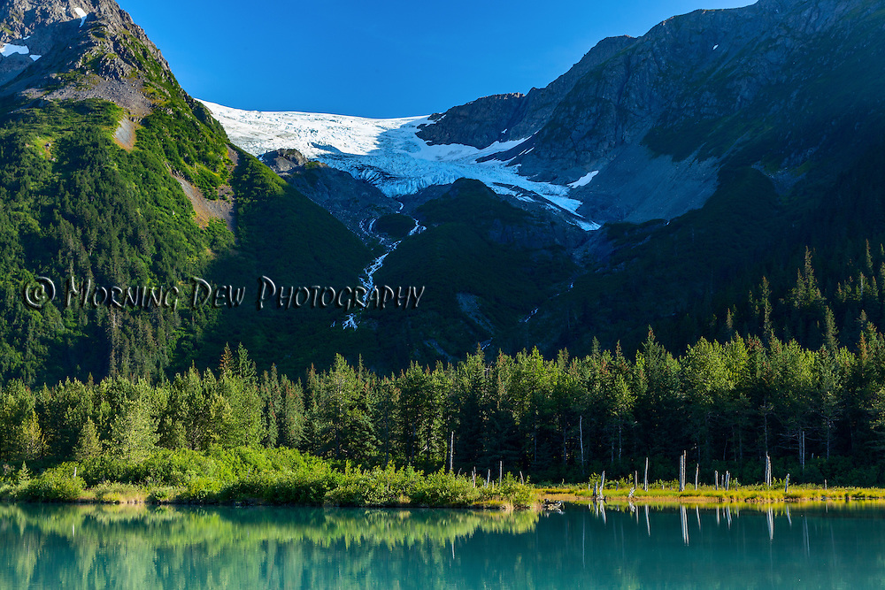 A turquoise pool reflects the summer greenery at the foot of Explorer Glacier in Portage Valley, Alaska