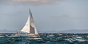 Yacht sailing in high wind off Waiheke Island, Firth of Thames, Hauraki Gulf, New Zealand.