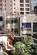 Herb garden at NUR, 3/F, 1 Lyndhurst Terrace, Hong Kong