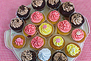 Brightly coloured cup cakes on sale at Farmers Market, County Clare, West of Ireland