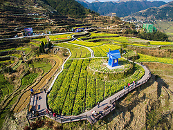 Tourists view rape blossoms in the terraced fields in Xiaozhoushan Township of Qingtian County, east China's Zhejiang Province, March 29, 2016. EXPA Pictures © 2016, PhotoCredit: EXPA/ Photoshot/ Xu Yu<br /> <br /> *****ATTENTION - for AUT, SLO, CRO, SRB, BIH, MAZ, SUI only*****
