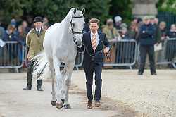 Lips Tim (NED) - Keyflow NOP<br /> First Horse Inspection - Mitsubishi Motors Badminton Horse Trials <br /> Badminton 2015