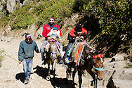 Sukhmeet Singh and his children riding up the trail to Hem Kund.