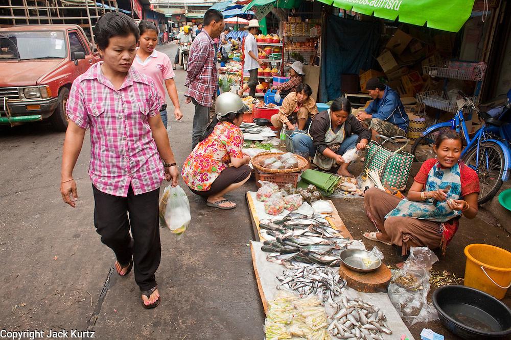06 APRIL 2010 - NAKHON PHANOM, THAILAND: A woman walks past fish vendors in the market in Nakhon Phanom, Thailand.    PHOTO BY JACK KURTZ