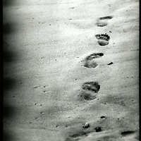 Footprints in a sandy beach