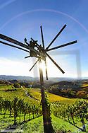 Suedsteirische Weinstrasse, Southern Styria wine route in autumn, Austria, Styria, Southern Styria, Glanz
