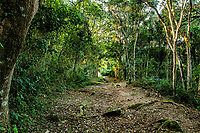 Trilha da Costa da Lagoa. Florianópolis, Santa Catarina, Brasil. / Costa da Lagoa trekking trail. Florianopolis, Santa Catarina, Brazil.