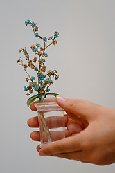 "© Licensed to London News Pictures. 02/06/2017. London, UK. A staff member presents ""A Fabergé jewelled gold, turquoise and hardstone study of Forget-Me-Nots"", c. 1910, (Est. GBP 250-350k).  Preview of Sotheby's sale of Russian pictures and works of art which takes place on 6 June 2017 at Sotheby's in New Bond Street. Photo credit : Stephen Chung/LNP"