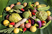 French Polynesia Tahiti Presque-ile agriculture, organic farms, bees & coconut palms