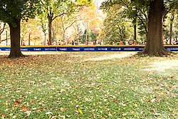 ING New York City Marathon: runners entering Central Park with 600 meters to go