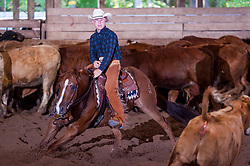 September 23, 2017 - Minshall Farm Cutting 5, held at Minshall Farms, Hillsburgh Ontario. The event was put on by the Ontario Cutting Horse Association. Riding in the $25,000 Noivce Horse Class is Brian Kelly on The Reyl Slim Shady owned by Eric Bouchard.