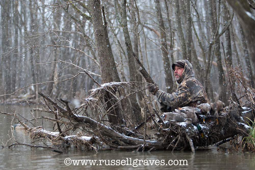 duck hunter with harevsted ducks shooting from flooded timber