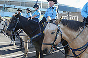 Dec 3, 2017; Oakland, CA, USA; General view of Security and the Alameda County Mounted Patrol prior to an NFL game between the New York Giants and the Oakland Raiders at Oakland-Alameda County Coliseum.