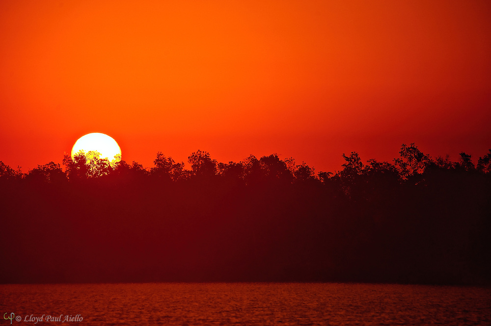The sun rises over distant mangroves at Plate Creek Bay, Everglades, Florida