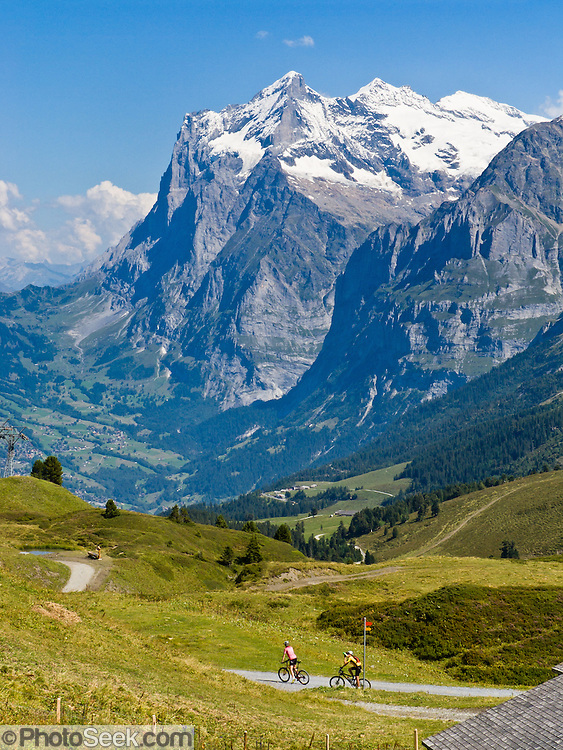 "The Wetterhorn or ""Weather Peak"" (12,143 feet) rises above bicycle riders ascending Grindelwald Valley near Kleine Scheidegg in the Berner Oberland, Switzerland, the Alps, Europe. Grindelwald can be reached by train (Berner Oberland Bahn) from Interlaken. The Bernese Highlands are the upper part of Bern Canton. UNESCO lists ""Swiss Alps Jungfrau-Aletsch"" as a World Heritage Area (2001, 2007)."