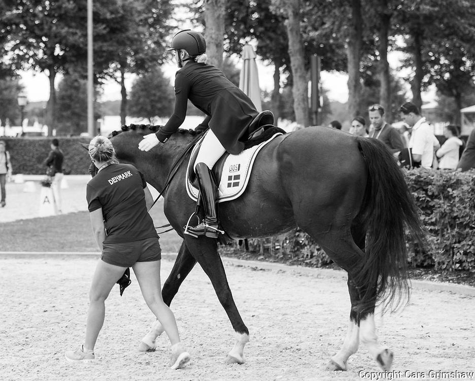 ANNA ZIBRANDTSEN (DEN) rides Arlando in the Dressage Grand Prix Special CDI at CHIO Aachen, Germany July 21 2017