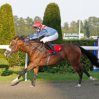 Kempton 15th September 2012