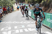 Rafal Majka (POL, Bora - Hansgrohe) during the 73th Edition of the 2018 Tour of Spain, Vuelta Espana 2018, Stage 13 cycling race, Candas Carreno - La Camperona 174,8 km on September 7, 2018 in Spain - Photo Luca Bettini / BettiniPhoto / ProSportsImages / DPPI