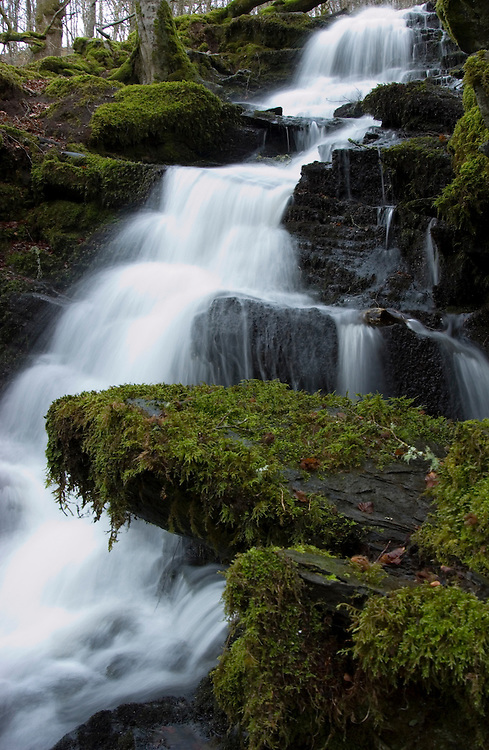 Falls of Moness, Aberfeldy, perthshire, Scotland