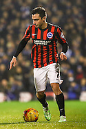 Adrian Colunga of Brighton and Hove Albion during the Sky Bet Championship match at Craven Cottage, London<br /> Picture by David Horn/Focus Images Ltd +44 7545 970036<br /> 29/12/2014